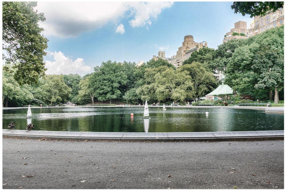 Metropolitan Museum and Central Park